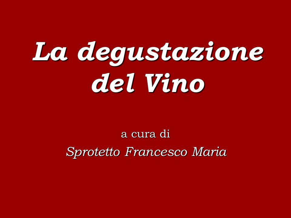 La degustazione del Vino a cura di Sprotetto Francesco Maria