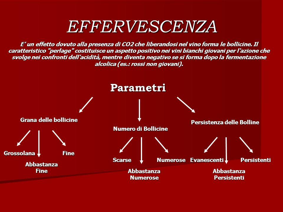 EFFERVESCENZA E' un effetto dovuto alla presenza di CO2 che liberandosi nel vino forma le bollicine. Il caratteristico