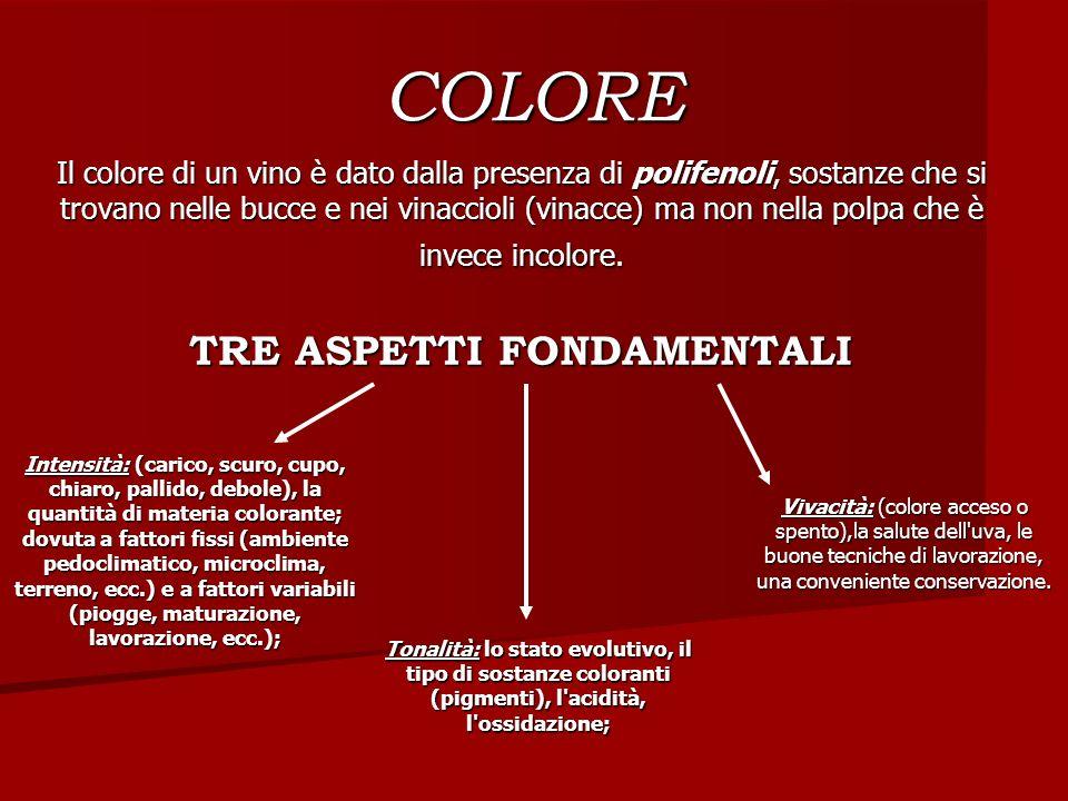 COLORE Il colore di un vino è dato dalla presenza di polifenoli, sostanze che si trovano nelle bucce e nei vinaccioli (vinacce) ma non nella polpa che