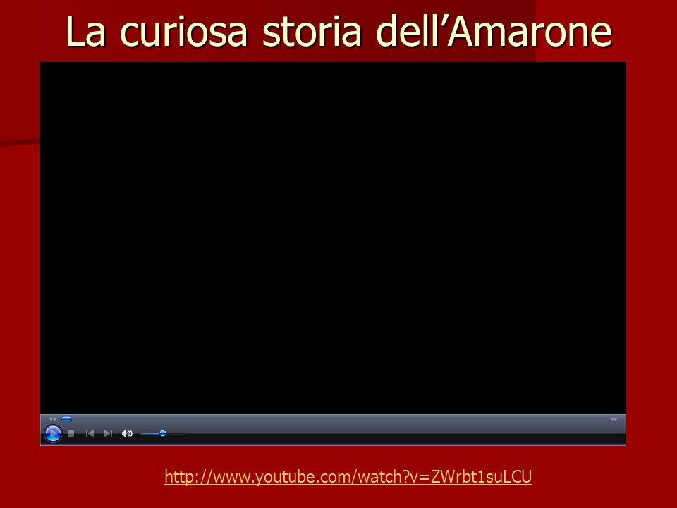 La curiosa storia dellAmarone http://www.youtube.com/watch?v=ZWrbt1suLCU