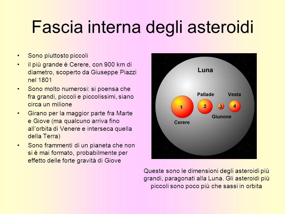 Fascia interna degli asteroidi Sono piuttosto piccoli il più grande è Cerere, con 900 km di diametro, scoperto da Giuseppe Piazzi nel 1801 Sono molto