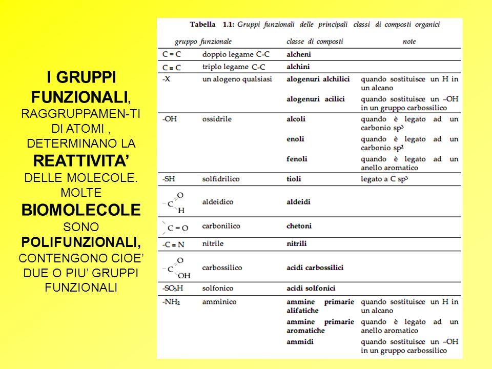 Biochimica-Introduzione.4 I GRUPPI FUNZIONALI, RAGGRUPPAMEN-TI DI ATOMI, DETERMINANO LA REATTIVITA DELLE MOLECOLE. MOLTE BIOMOLECOLE SONO POLIFUNZIONA
