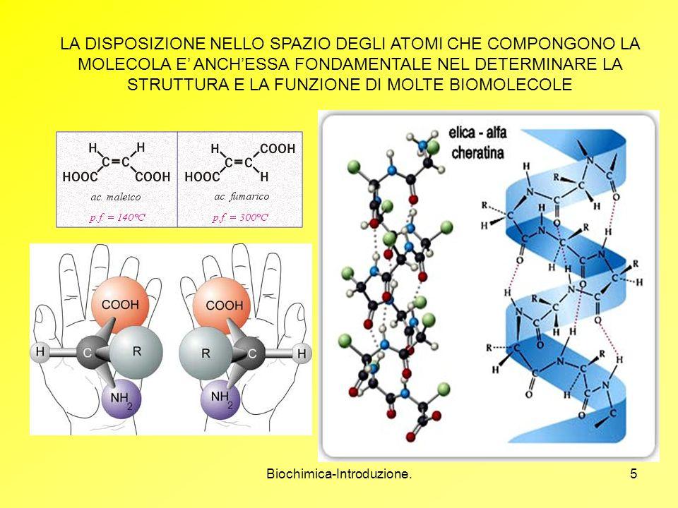 Biochimica-Introduzione.5 LA DISPOSIZIONE NELLO SPAZIO DEGLI ATOMI CHE COMPONGONO LA MOLECOLA E ANCHESSA FONDAMENTALE NEL DETERMINARE LA STRUTTURA E L