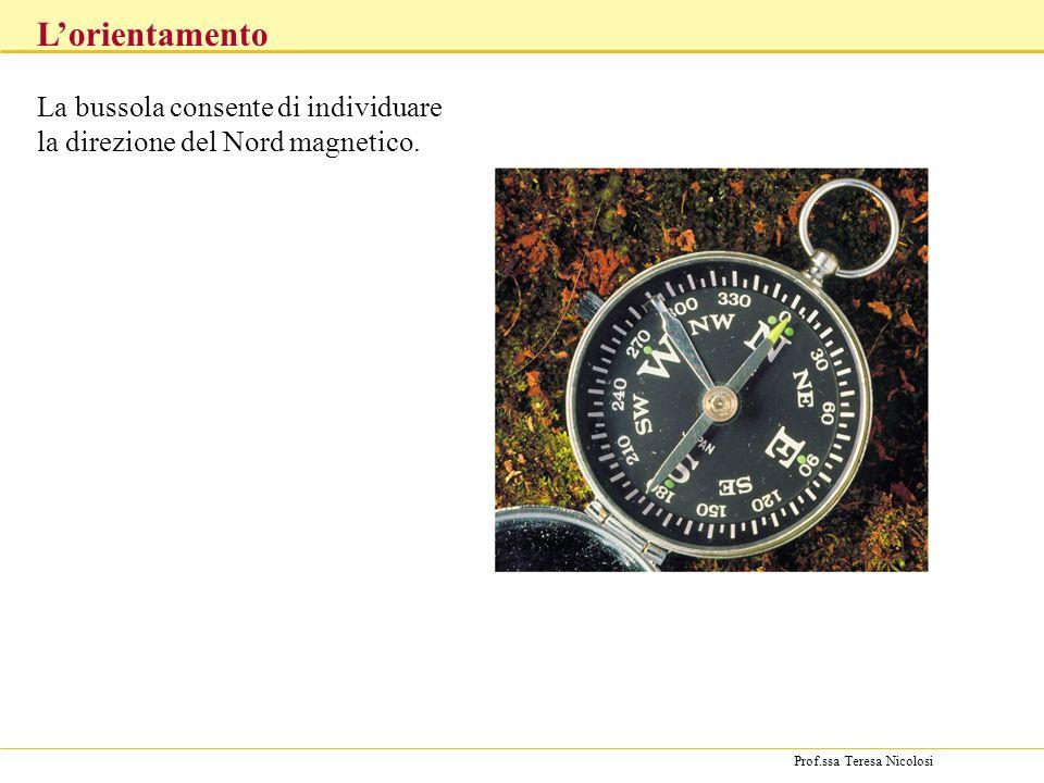 Prof.ssa Teresa Nicolosi La bussola consente di individuare la direzione del Nord magnetico. Lorientamento