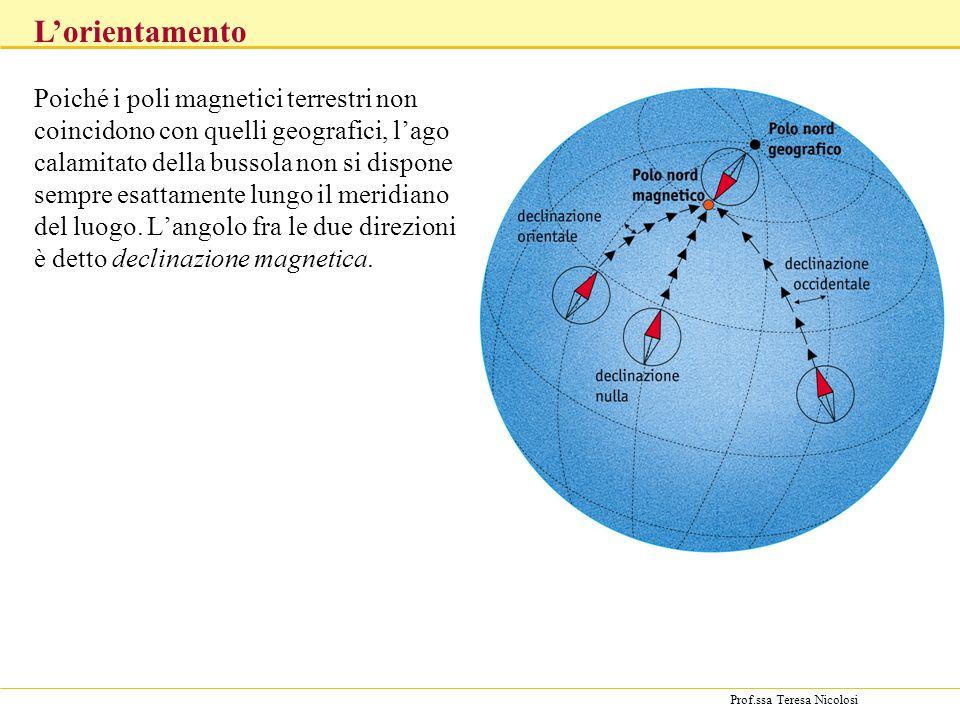 Prof.ssa Teresa Nicolosi Poiché i poli magnetici terrestri non coincidono con quelli geografici, lago calamitato della bussola non si dispone sempre e