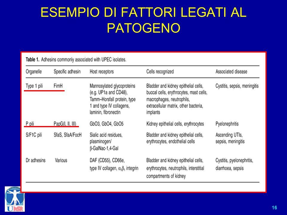 16 ESEMPIO DI FATTORI LEGATI AL PATOGENO