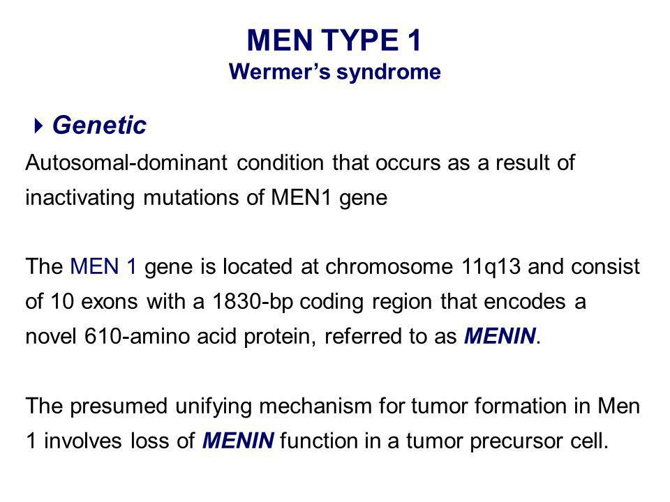 Genetic Autosomal-dominant condition that occurs as a result of inactivating mutations of MEN1 gene The MEN 1 gene is located at chromosome 11q13 and