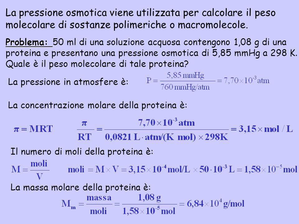 La pressione osmotica viene utilizzata per calcolare il peso molecolare di sostanze polimeriche o macromolecole. La concentrazione molare della protei