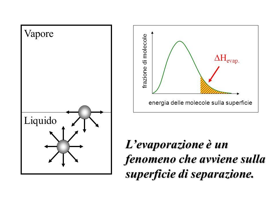 Liquido Vapore energia delle molecole sulla superficie frazione di molecole H evap. Levaporazione è un fenomeno che avviene sulla superficie di separa
