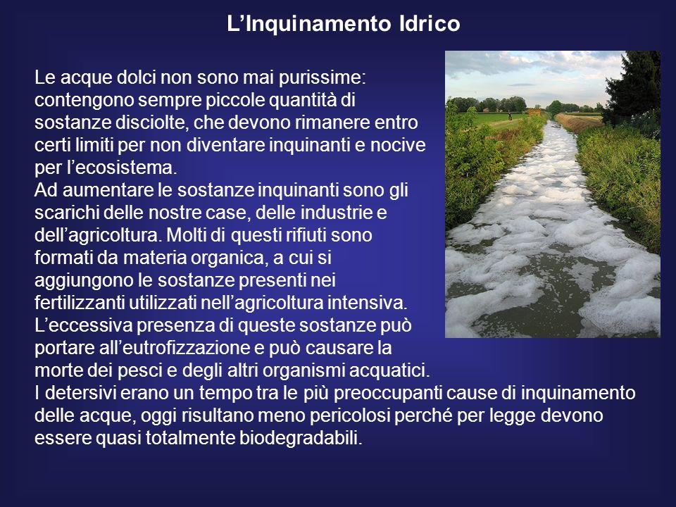 LInquinamento Idrico Le acque dolci non sono mai purissime: contengono sempre piccole quantità di sostanze disciolte, che devono rimanere entro certi limiti per non diventare inquinanti e nocive per lecosistema.