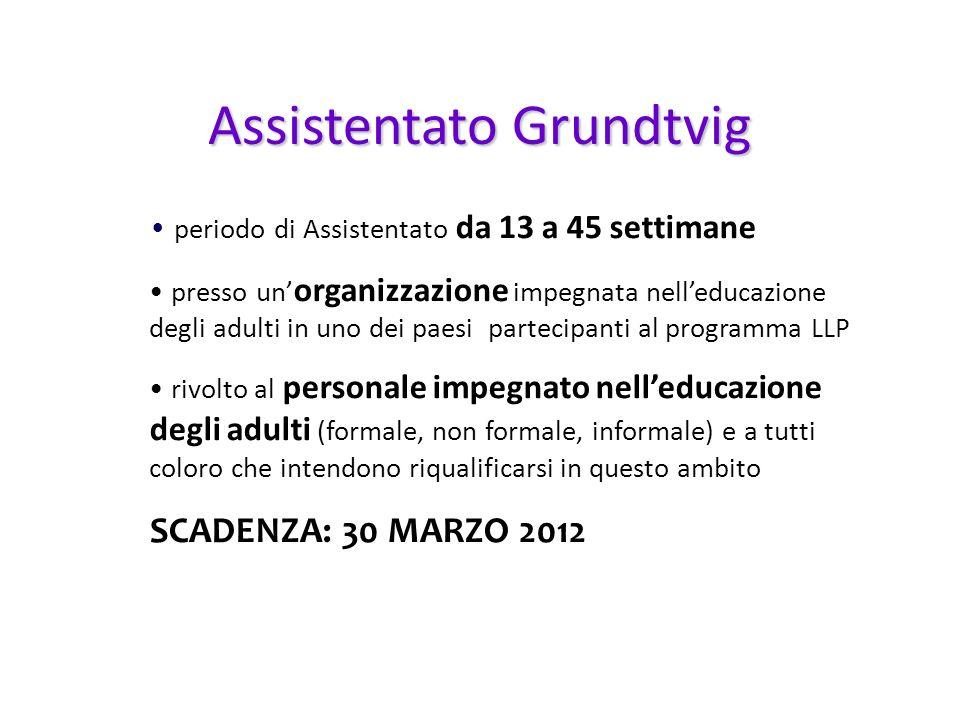 periodo di Assistentato da 13 a 45 settimane presso un organizzazione impegnata nelleducazione degli adulti in uno dei paesi partecipanti al programma