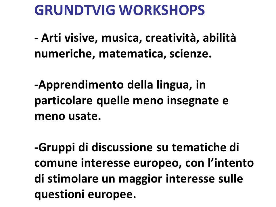 GRUNDTVIG WORKSHOPS - Arti visive, musica, creatività, abilità numeriche, matematica, scienze. -Apprendimento della lingua, in particolare quelle meno