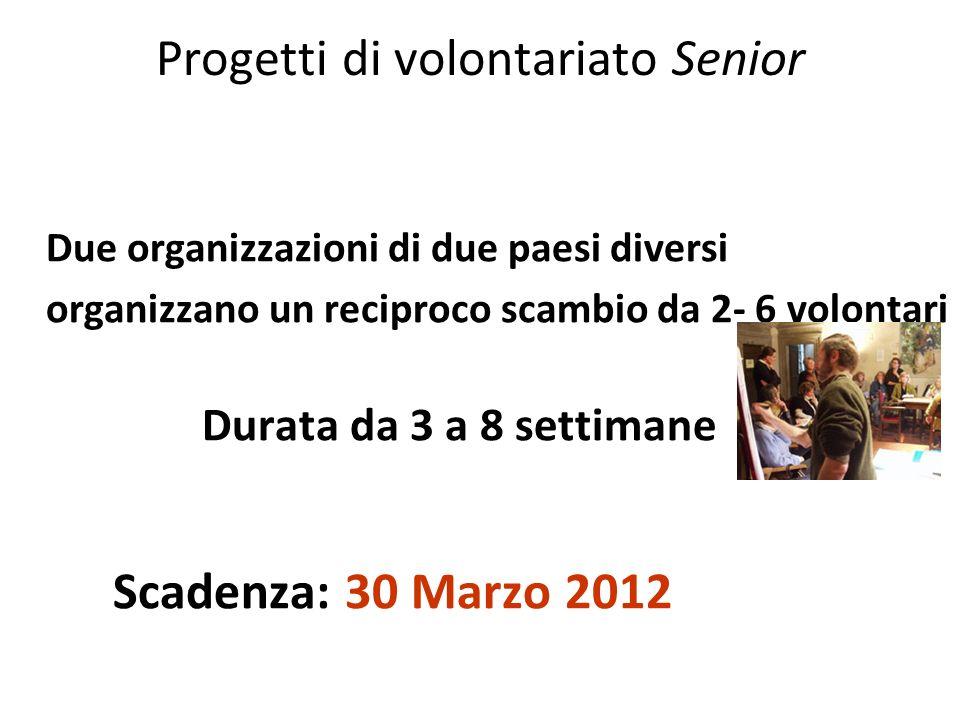 Progetti di volontariato Senior Due organizzazioni di due paesi diversi organizzano un reciproco scambio da 2- 6 volontari Durata da 3 a 8 settimane S