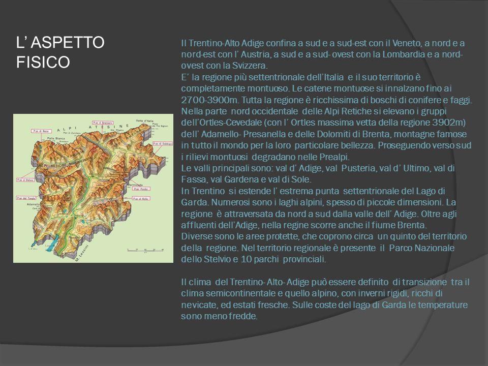 L ASPETTO FISICO Il Trentino-Alto Adige confina a sud e a sud-est con il Veneto, a nord e a nord-est con l Austria, a sud e a sud- ovest con la Lombardia e a nord- ovest con la Svizzera.