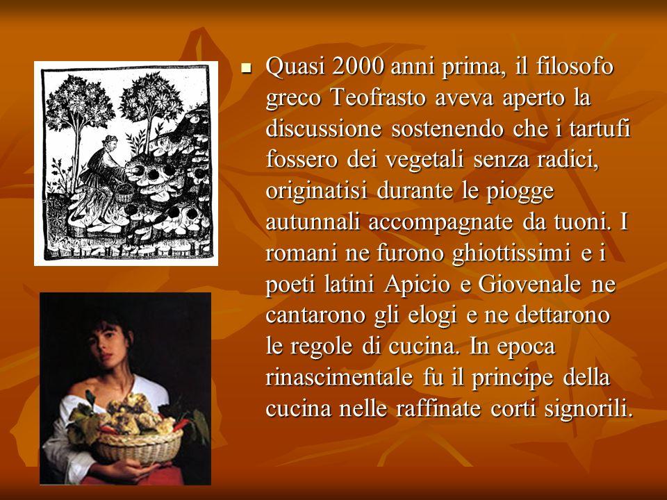Quasi 2000 anni prima, il filosofo greco Teofrasto aveva aperto la discussione sostenendo che i tartufi fossero dei vegetali senza radici, originatisi