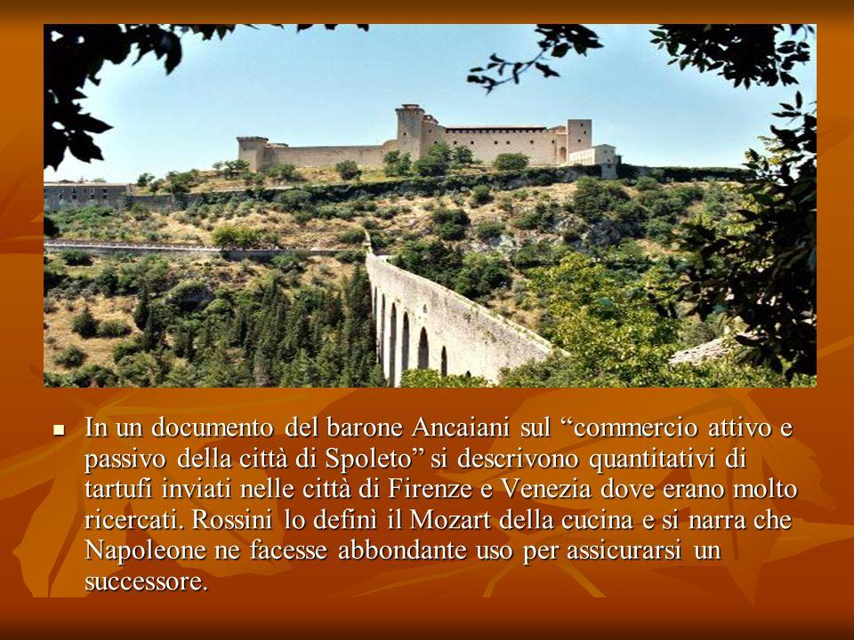 In un documento del barone Ancaiani sul commercio attivo e passivo della città di Spoleto si descrivono quantitativi di tartufi inviati nelle città di