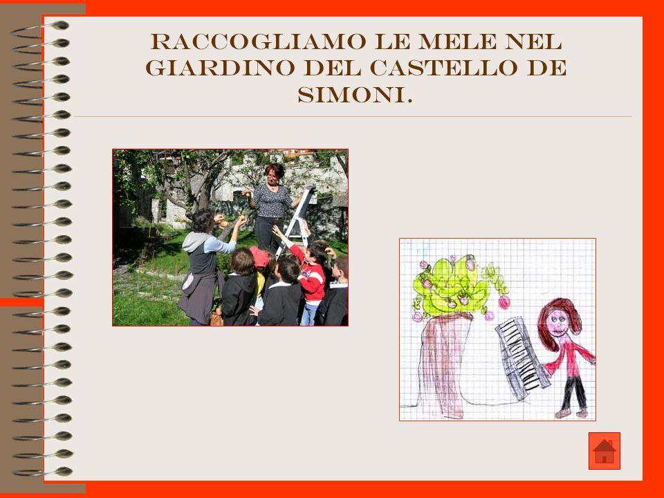 RACCOGLIAMO LE MELE NEL GIARDINO DEL CASTELLO DE SIMONI.