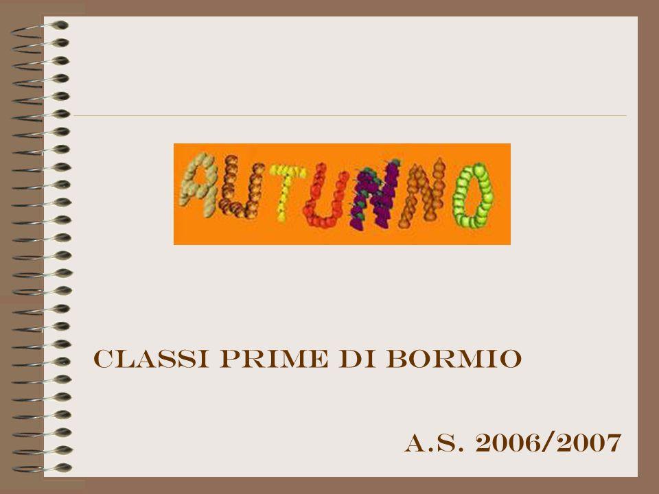 A.S. 2006/2007 Classi prime di bormio