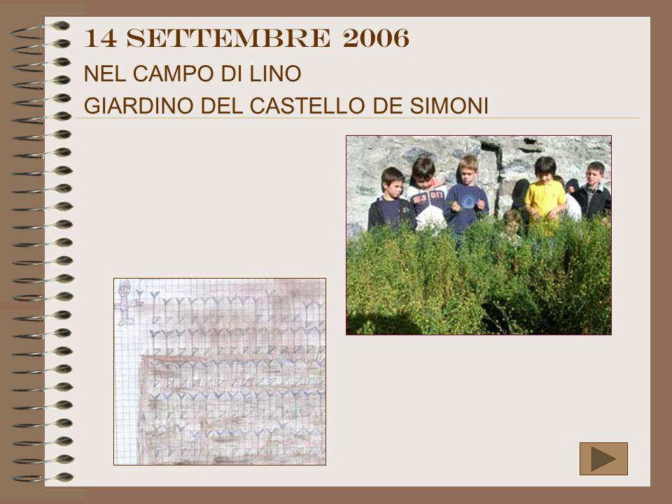 14 settembre 2006 NEL CAMPO DI LINO GIARDINO DEL CASTELLO DE SIMONI