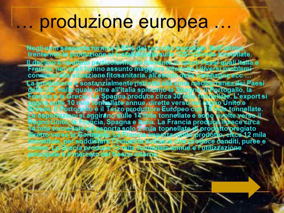 La castanicoltura italiana ha radici antiche e un futuro non prevedibile.