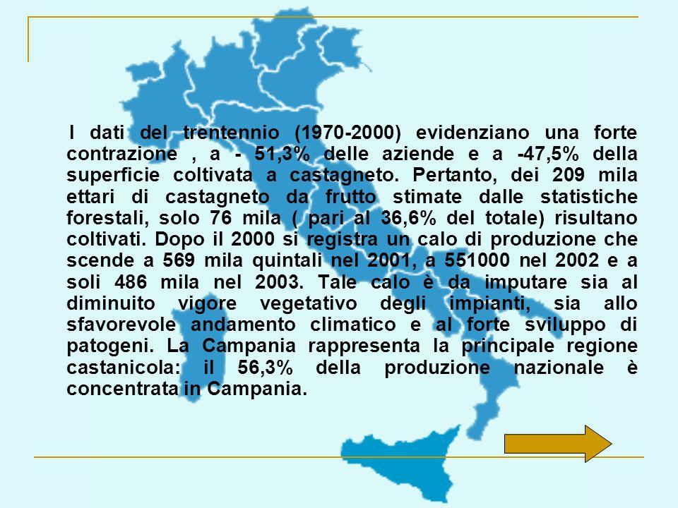 I dati del trentennio (1970-2000) evidenziano una forte contrazione, a - 51,3% delle aziende e a -47,5% della superficie coltivata a castagneto. Perta