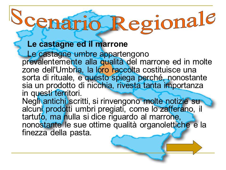 Le castagne ed il marrone Le castagne umbre appartengono prevalentemente alla qualità del marrone ed in molte zone dell'Umbria, la loro raccolta costi