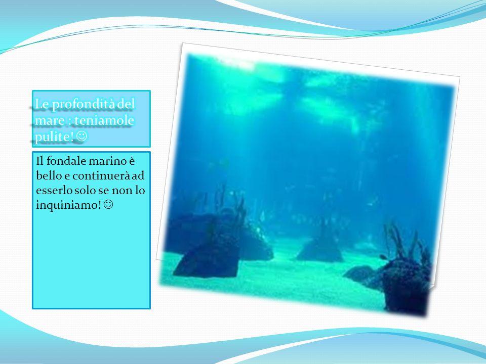 Il fondale marino è bello e continuerà ad esserlo solo se non lo inquiniamo!