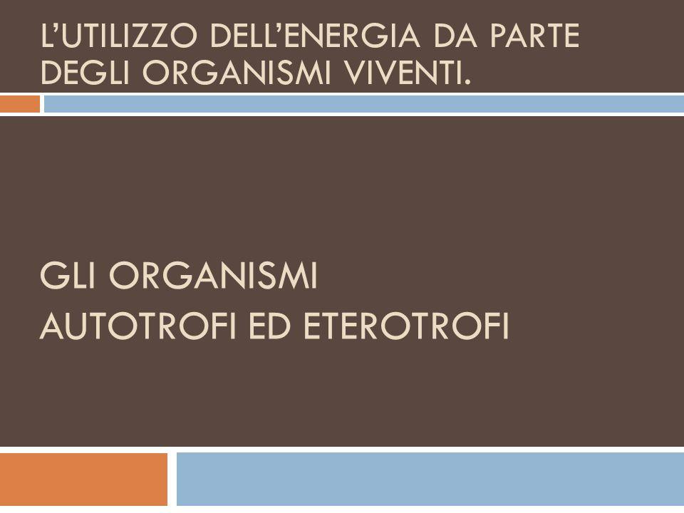 I REGNI DEI VIVENTI Elementi di Biologia Tassonomica o Sistematica