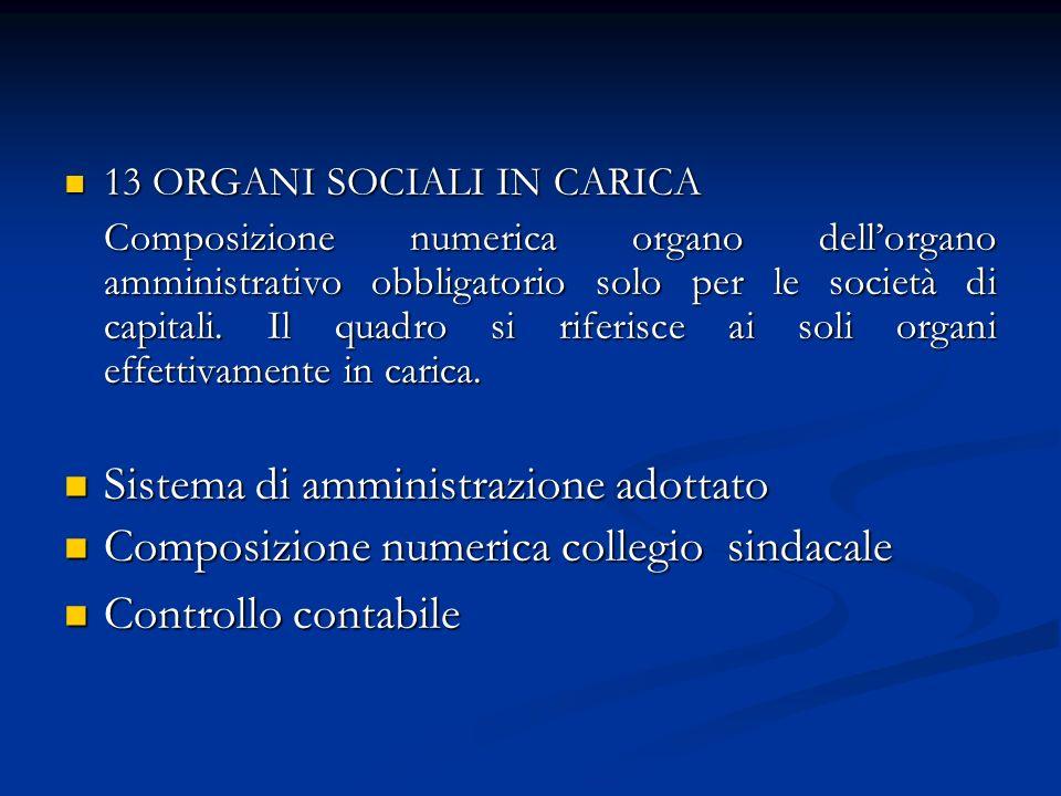 13 ORGANI SOCIALI IN CARICA 13 ORGANI SOCIALI IN CARICA Composizione numerica organo dellorgano amministrativo obbligatorio solo per le società di capitali.