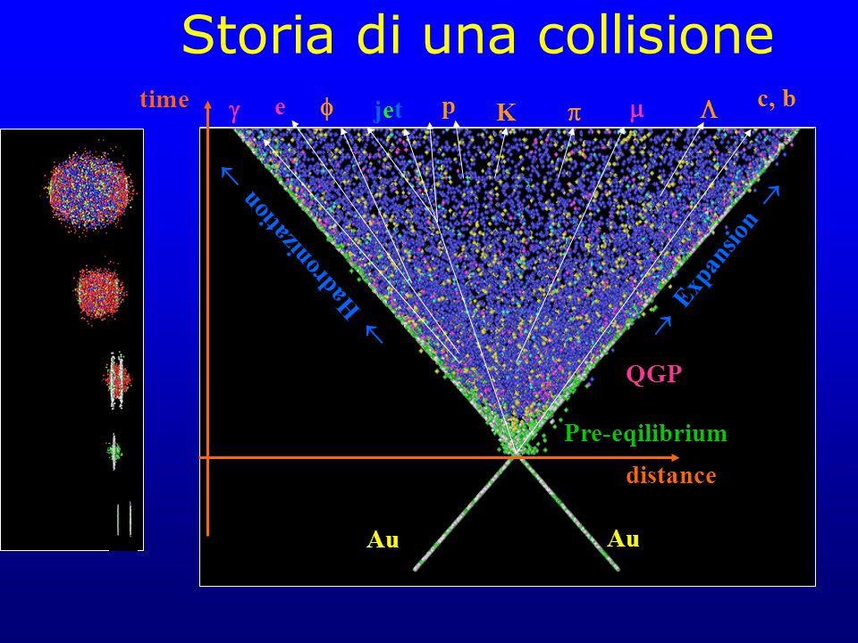 distance time Au Expansion p K QGP e Hadronization jetjet c, b Pre-eqilibrium Storia di una collisione