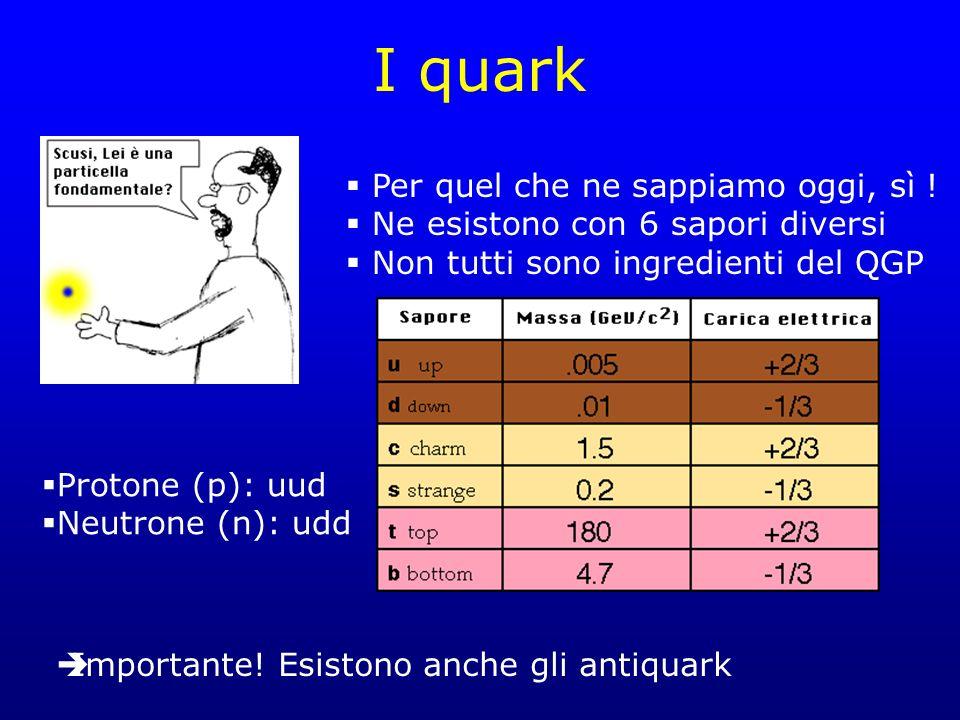 I quark Per quel che ne sappiamo oggi, sì ! Ne esistono con 6 sapori diversi Non tutti sono ingredienti del QGP Protone (p): uud Neutrone (n): udd Imp