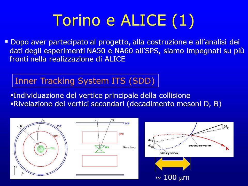 Torino e ALICE (1) Dopo aver partecipato al progetto, alla costruzione e allanalisi dei dati degli esperimenti NA50 e NA60 allSPS, siamo impegnati su più fronti nella realizzazione di ALICE Inner Tracking System ITS (SDD) Individuazione del vertice principale della collisione Rivelazione dei vertici secondari (decadimento mesoni D, B) ~ 100 m