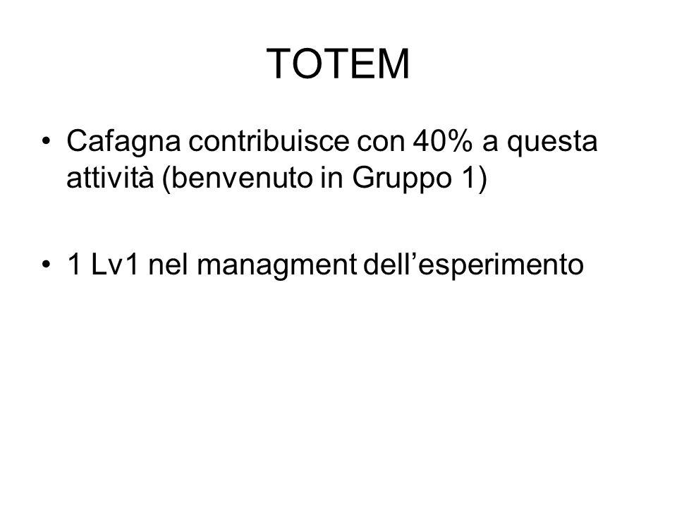 TOTEM Cafagna contribuisce con 40% a questa attività (benvenuto in Gruppo 1) 1 Lv1 nel managment dellesperimento