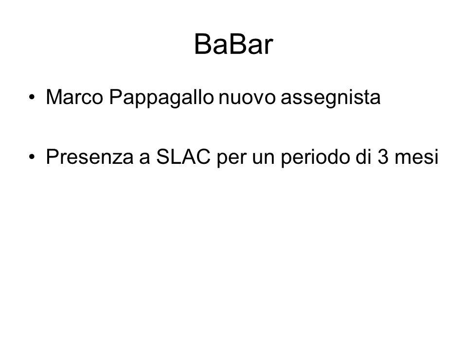 BaBar Marco Pappagallo nuovo assegnista Presenza a SLAC per un periodo di 3 mesi