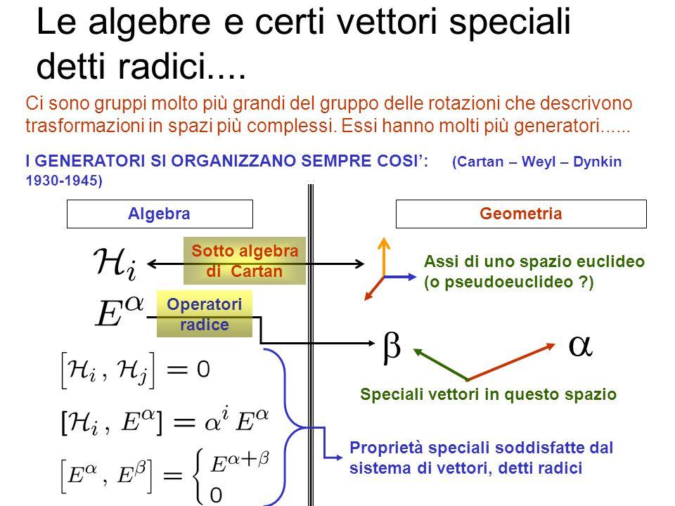 Le algebre e certi vettori speciali detti radici.... Siccome le rotazioni sono trasformazioni continue, esse sono generate da generatori infinitesimi,