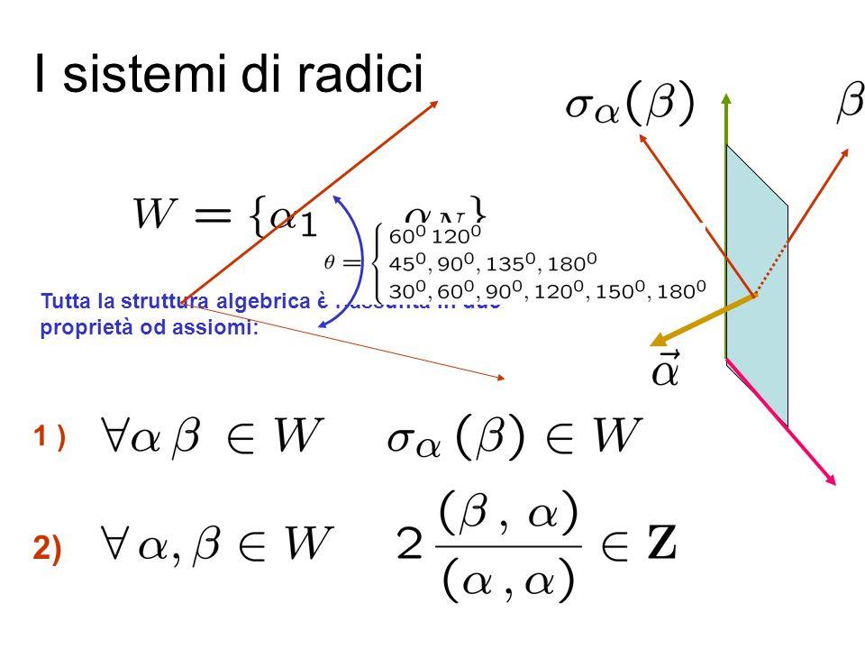 Le algebre e certi vettori speciali detti radici.... Ci sono gruppi molto più grandi del gruppo delle rotazioni che descrivono trasformazioni in spazi