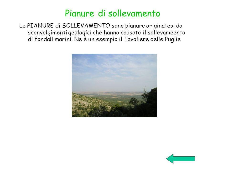 Pianure di sollevamento Le PIANURE di SOLLEVAMENTO sono pianure originatesi da sconvolgimenti geologici che hanno causato il sollevameento di fondali