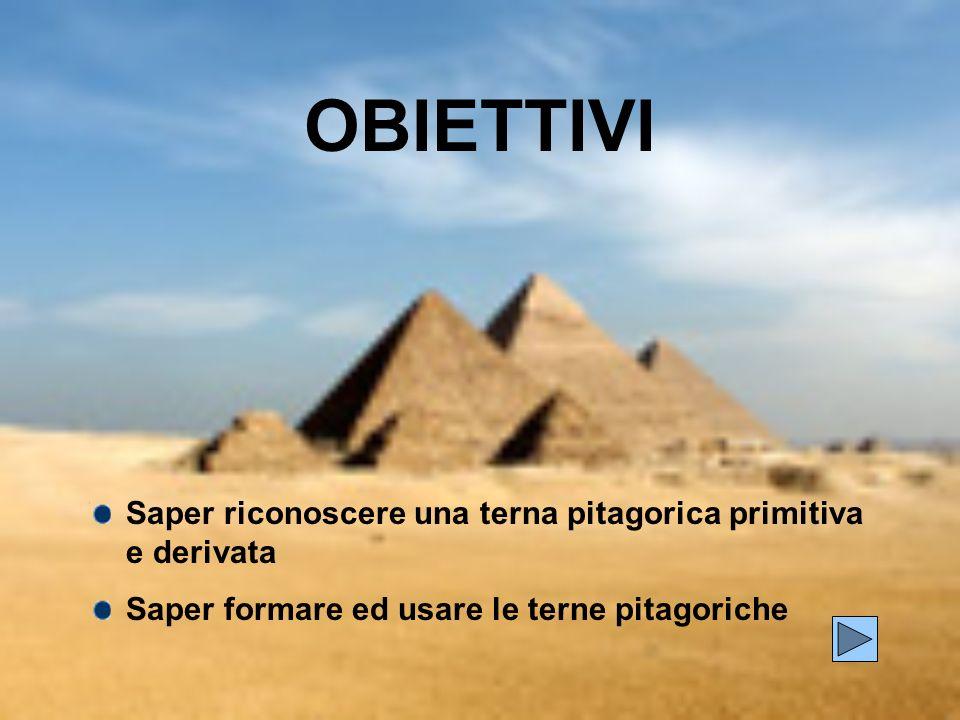 OBIETTIVI Saper riconoscere una terna pitagorica primitiva e derivata Saper formare ed usare le terne pitagoriche