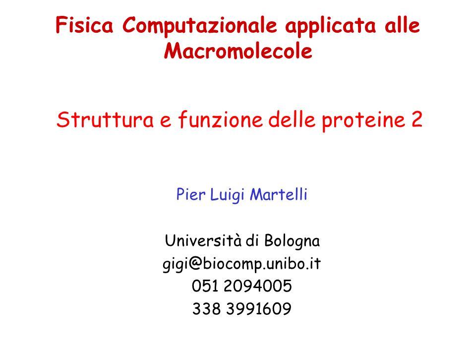 Fisica Computazionale applicata alle Macromolecole Pier Luigi Martelli Università di Bologna gigi@biocomp.unibo.it 051 2094005 338 3991609 Struttura e