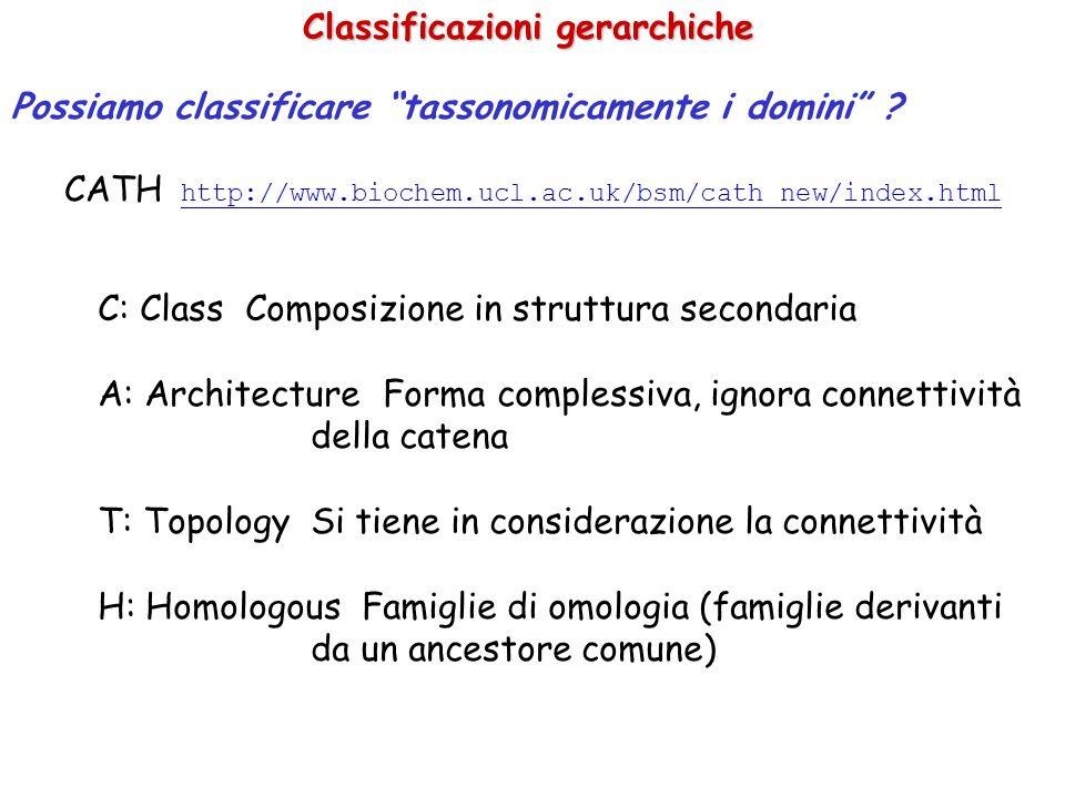 Classificazioni gerarchiche CATH http://www.biochem.ucl.ac.uk/bsm/cath_new/index.html http://www.biochem.ucl.ac.uk/bsm/cath_new/index.html C: Class Co