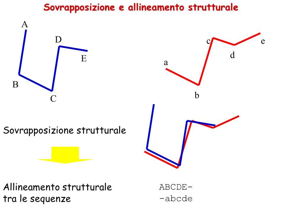 Sovrapposizione e allineamento strutturale A B C D E c a b d e ABCDE- -abcde Sovrapposizione strutturale Allineamento strutturale tra le sequenze