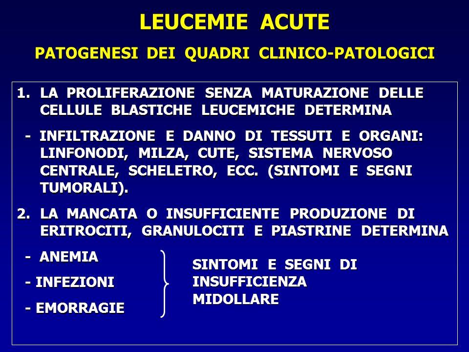 1.LA PROLIFERAZIONE SENZA MATURAZIONE DELLE CELLULE BLASTICHE LEUCEMICHE DETERMINA - INFILTRAZIONE E DANNO DI TESSUTI E ORGANI: LINFONODI, MILZA, CUTE