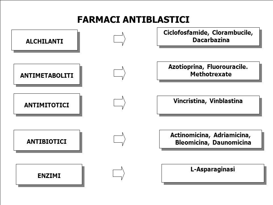 ALCHILANTI FARMACI ANTIBLASTICI Ciclofosfamide, Clorambucile, Dacarbazina ANTIMETABOLITI ANTIMITOTICI ANTIBIOTICI ENZIMI Azotioprina, Fluorouracile. M