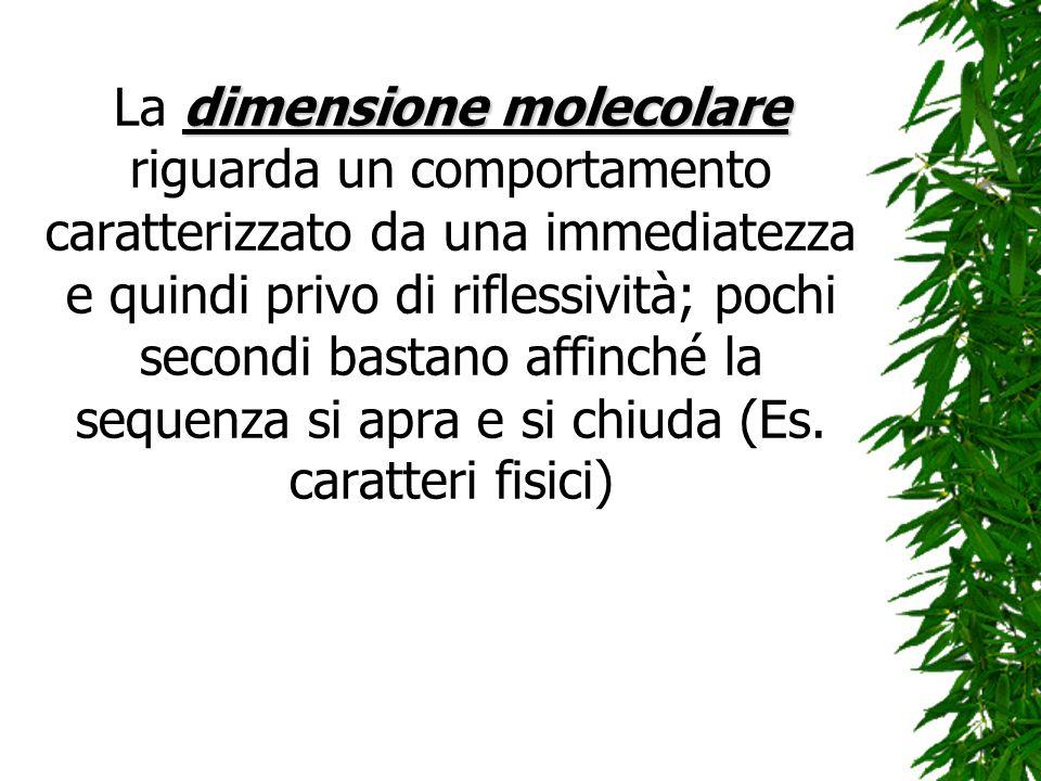 dimensione molecolare La dimensione molecolare riguarda un comportamento caratterizzato da una immediatezza e quindi privo di riflessività; pochi seco