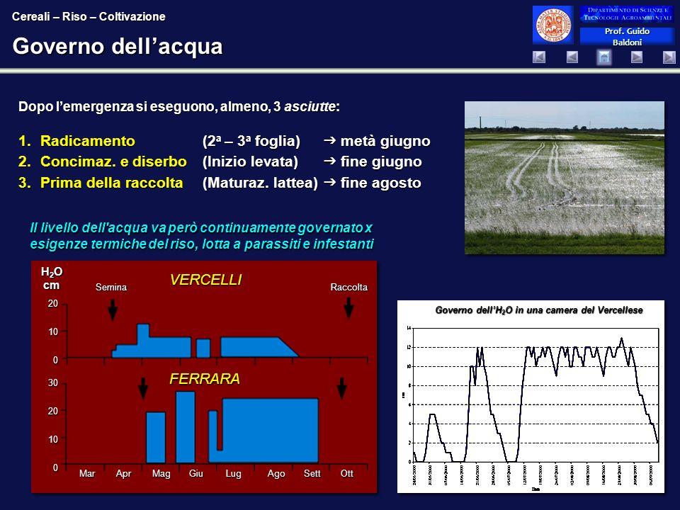 Prof. Guido Baldoni Prof. Guido Baldoni Governo dellacqua Dopo lemergenza si eseguono, almeno, 3 asciutte: 1.Radicamento (2 a – 3 a foglia) metà giugn