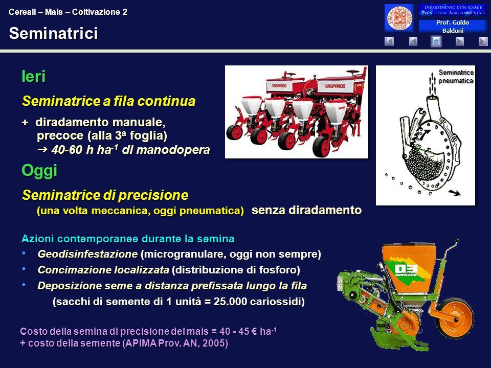 Prof. Guido Baldoni Prof. Guido BaldoniSeminatrici Ieri Seminatrice a fila continua + diradamento manuale, precoce (alla 3 a foglia) 40-60 h ha -1 di