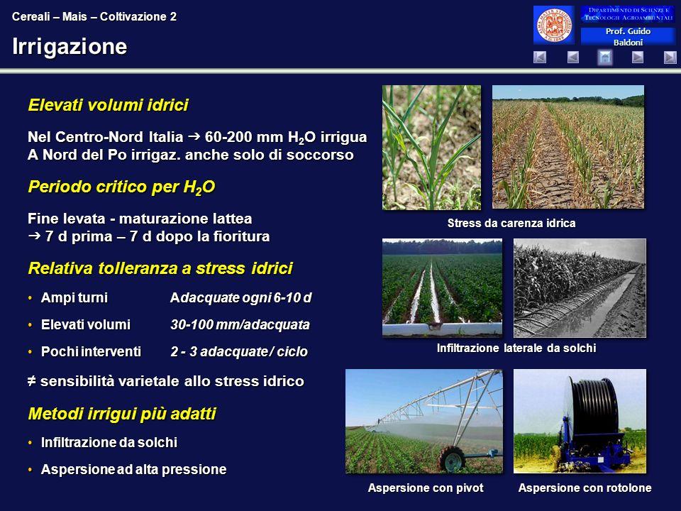 Prof. Guido Baldoni Prof. Guido BaldoniIrrigazione Elevati volumi idrici Nel Centro-Nord Italia 60-200 mm H 2 O irrigua A Nord del Po irrigaz. anche s