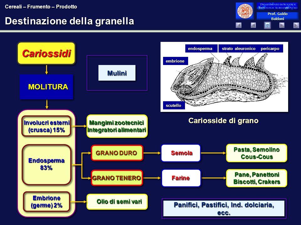 Prof. Guido Baldoni Prof. Guido Baldoni Destinazione della granella Cariosside di grano endosperma strato aleuronico pericarpo embrione scutello Cario