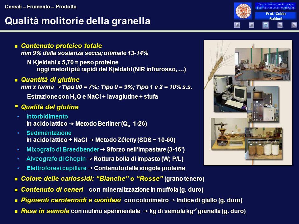 Prof. Guido Baldoni Prof. Guido Baldoni Qualità molitorie della granella Contenuto proteico totale min 9% della sostanza secca; ottimale 13-14% Conten