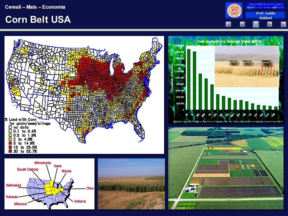 Prof. Guido Baldoni Prof. Guido Baldoni Corn Belt USA Cereali – Mais – Economia